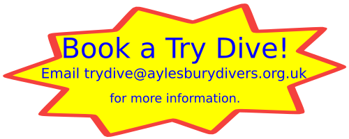 Click to email us to organise a try dive