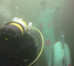 Diver and creature swimming along together